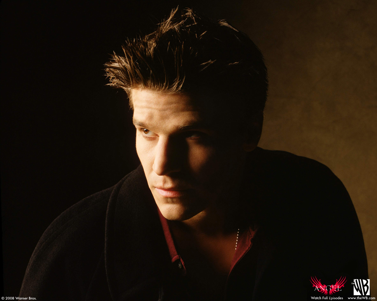 David Boreanaz as the Vampire