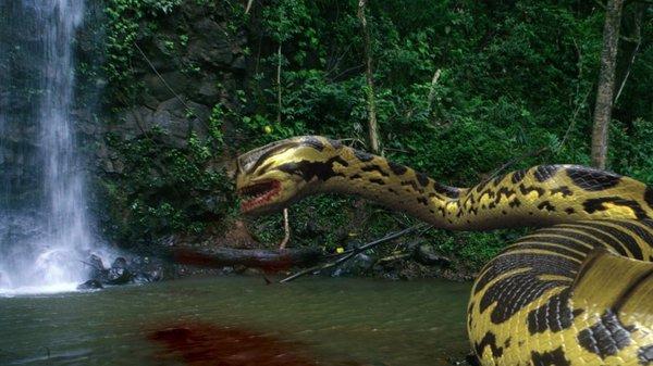 Piranhaconda Promo Photos And Trailer Multipleverses Com
